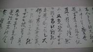 PIC_0080-thumb-190xauto-1453.jpg